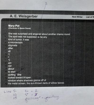 "A E Weisgerber Fibonacci Microstructure Draft ""Mary-Pat"" anneweisgerber.com"